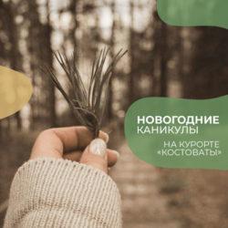 Новогодние каникулы на курорте Костоваты